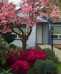 Counseling Office Space in Kent WA
